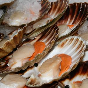 Come riconoscere i frutti di mare