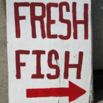 Definizione di pesce fresco