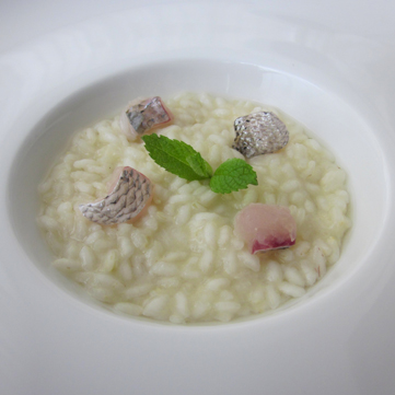 Risotto al dentice crudo*