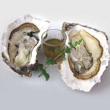 Ostriche crude con salsa di olio e limone alla menta