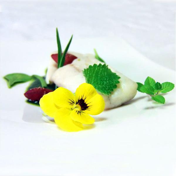 Ombrina con i fiori eduli di violetta selvatica fresco pesce for Contenitore per pesci
