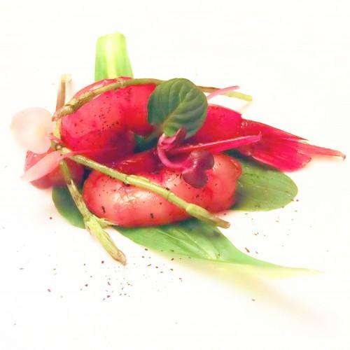 Gamberi rossi su foglie di soncino