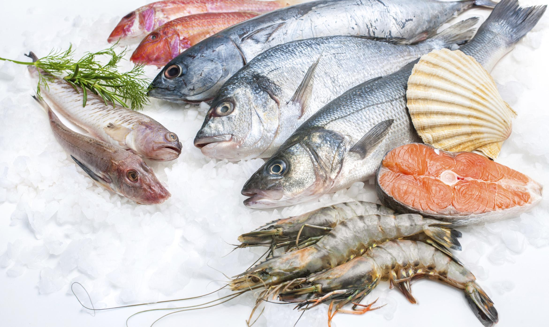 News e notizie sul pesce fresco pesce for Quanto vive un pesce rosso