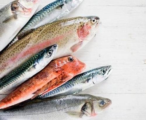 Pesce fresco: salute e sapore per restare in forma