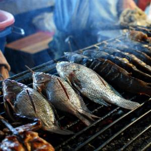 Le proprietà nutritive del pesce