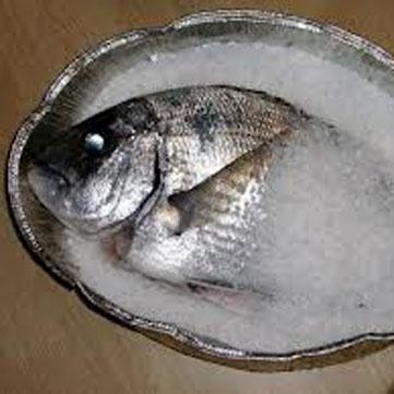 Sarago al sale