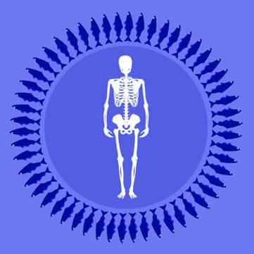 Osteoporosi: ossa solide grazie al pesce!