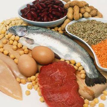 Scopriamo le proteine del pesce