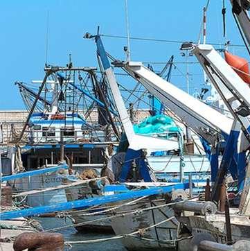 La festa del mare: rivalutazione italiana dei prodotti ittici