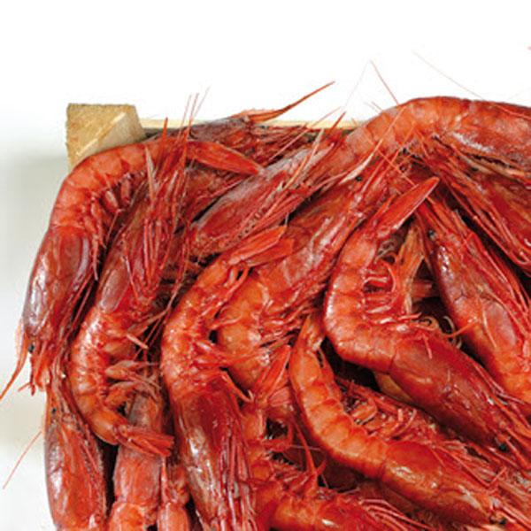 Risotto con clorofilla di prezzemolo e tartare di gamberi for Ricette gambero rosso