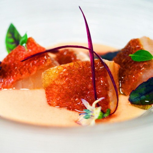 Tataki di scorfano, con vinaigrette di acqua di pomodoro