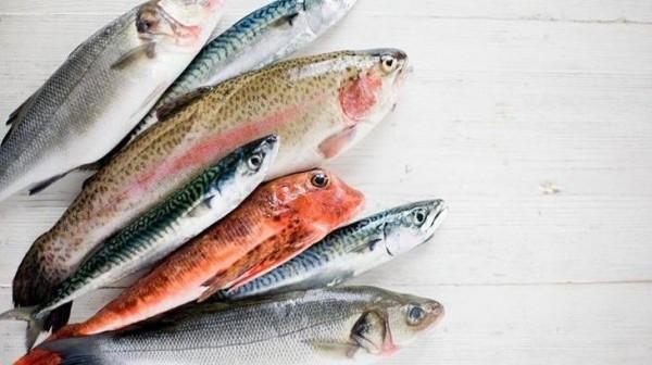 come_riconoscere_pesce_fresco_ministero_salute--730x410