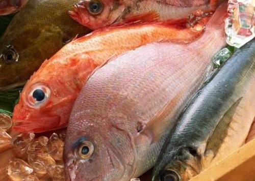 Dieta Mediterranea: i segreti del pesce fresco di Acciaroli